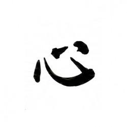 Calligraphie de Jacques Foussadier